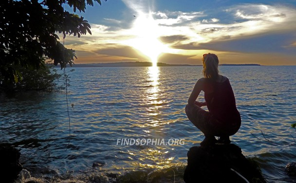 Find Sophia Foundation established